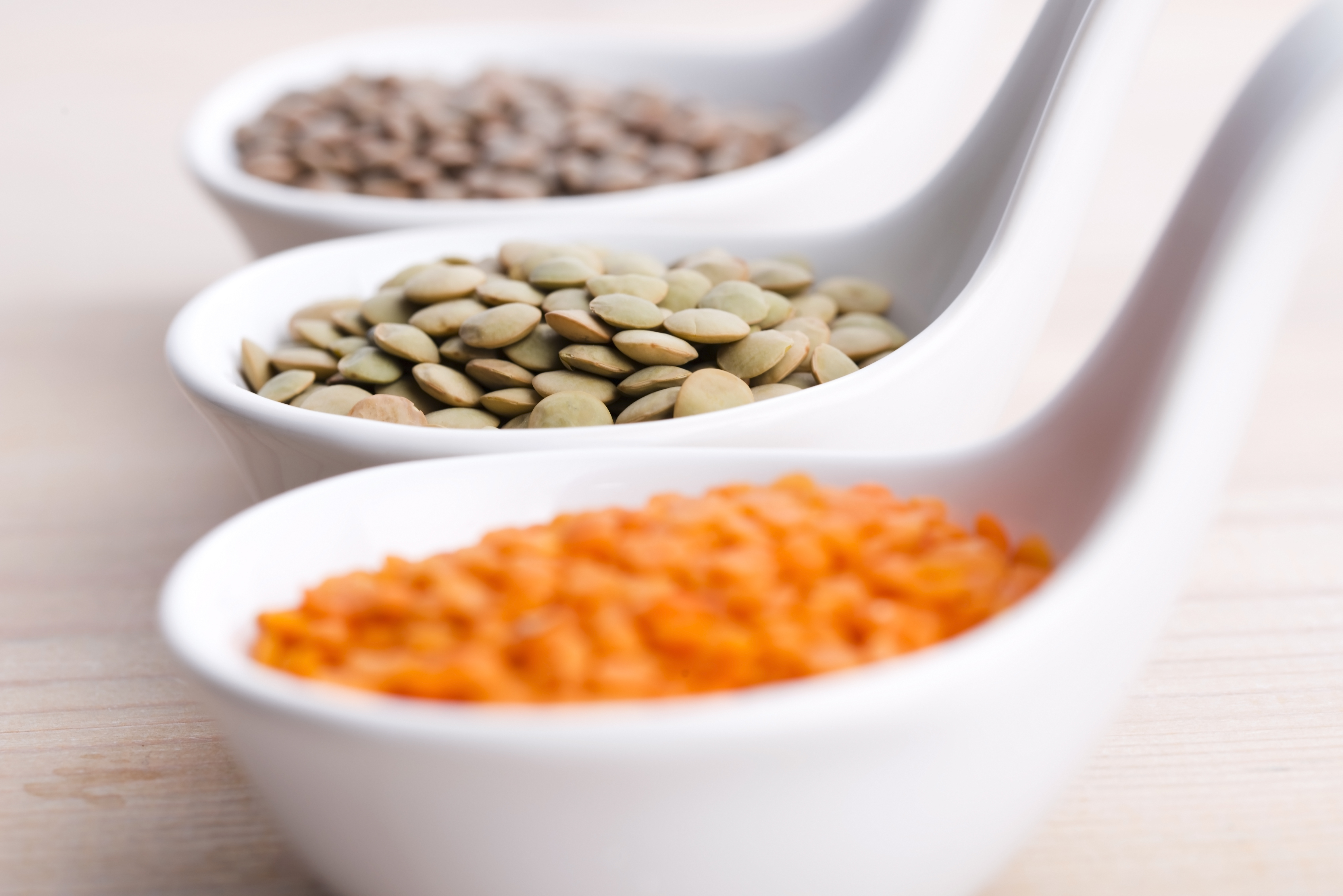 Digest The Food We Eat Enzymes Are Needed Because