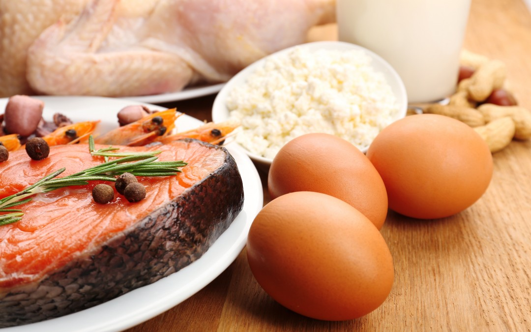 Living Happily Ever After: Protein